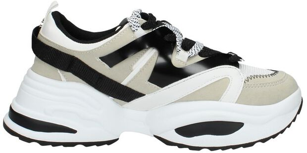 Fay Sneaker - large