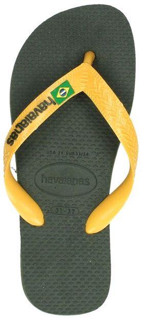 Hav. Brasil Logo - large