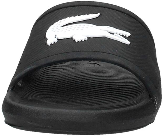 Croco Slide 119 1 - large