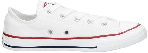 Chuck Taylor All Star Seasonal - large